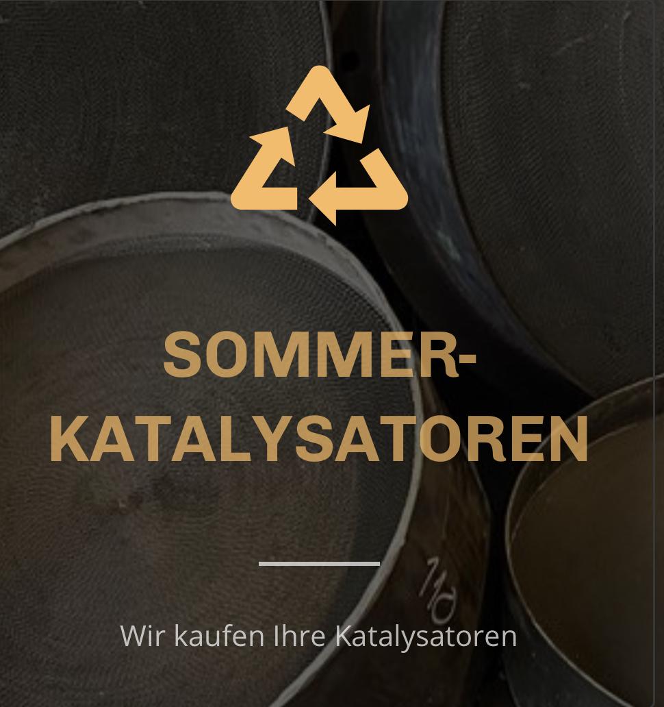 Sommer-Katalysatoren logo