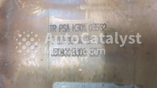 TR PSA K301 — Photo № 4 | AutoCatalyst Market