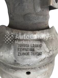 L31810 — Foto № 2 | AutoCatalyst Market