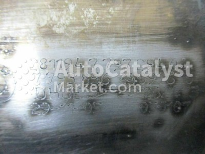 7793856 — Photo № 5 | AutoCatalyst Market