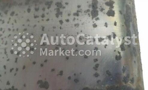55217451 — Photo № 4 | AutoCatalyst Market